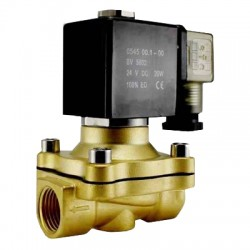 N2W160-10-110VAC